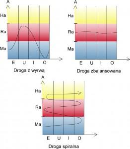 wykresy 1