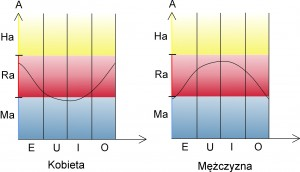 wykresy 2